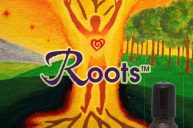 Roots: Anchoring & Aligning Life Force