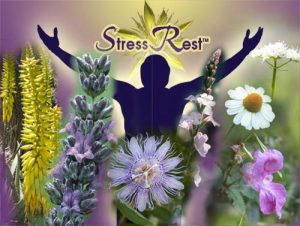 StressRest: For Reduced Anxiety & Improved Sleep