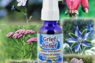 Grief Relief: Helping to Process Grief Without Repressing It