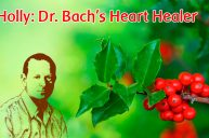 Holly: Healing The Battle Within Our Own Hearts