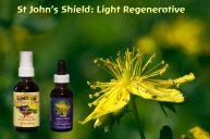 St. John's Shield For Regenerating Inner Light