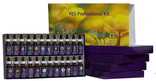 fes professional kit