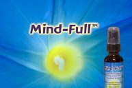 Mind-Full: Filter and Focus