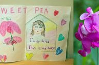 Sweet Pea: Finding a Home, Belonging