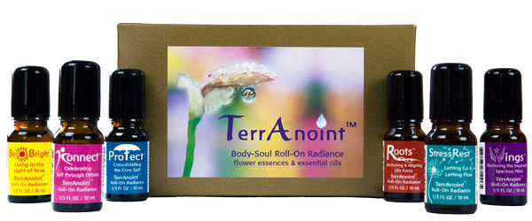 all six terranoint oils with box