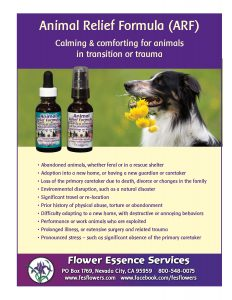 animal relief formula sales sheet