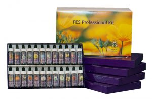 FES Professional Kit - 1/4 oz